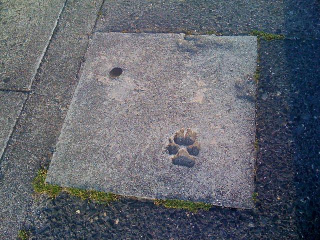 コンクリートの足跡