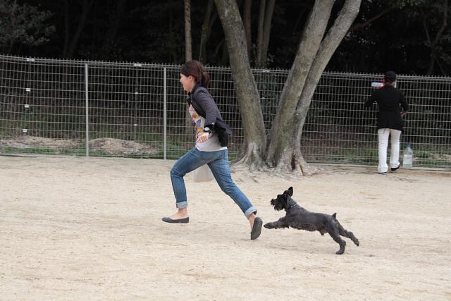 彼女と走るエース