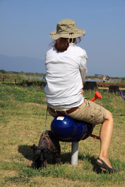 子供用遊具で黄昏る彼女と草を喰らうエース