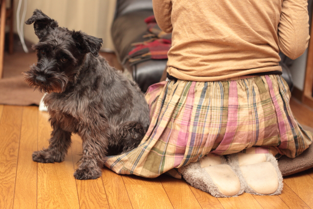 スカートに座るエース