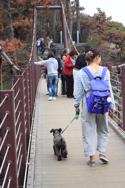 吊り橋なエース