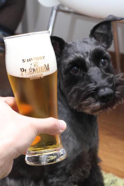 ビール最高なエース