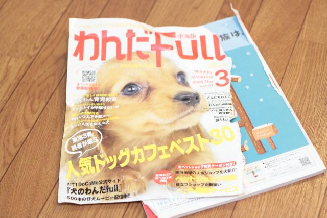 ビリビリな雑誌