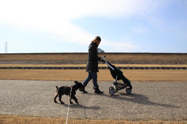 家族散歩なエース