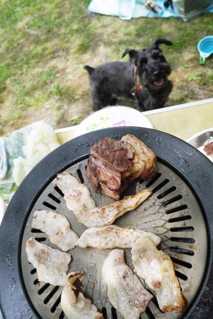 肉なエース