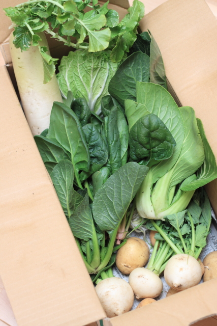 ぶっちゃ農園な野菜
